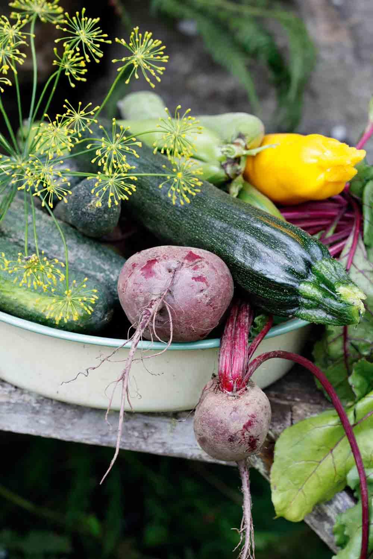 Nelson Gardens nya serie Organic,