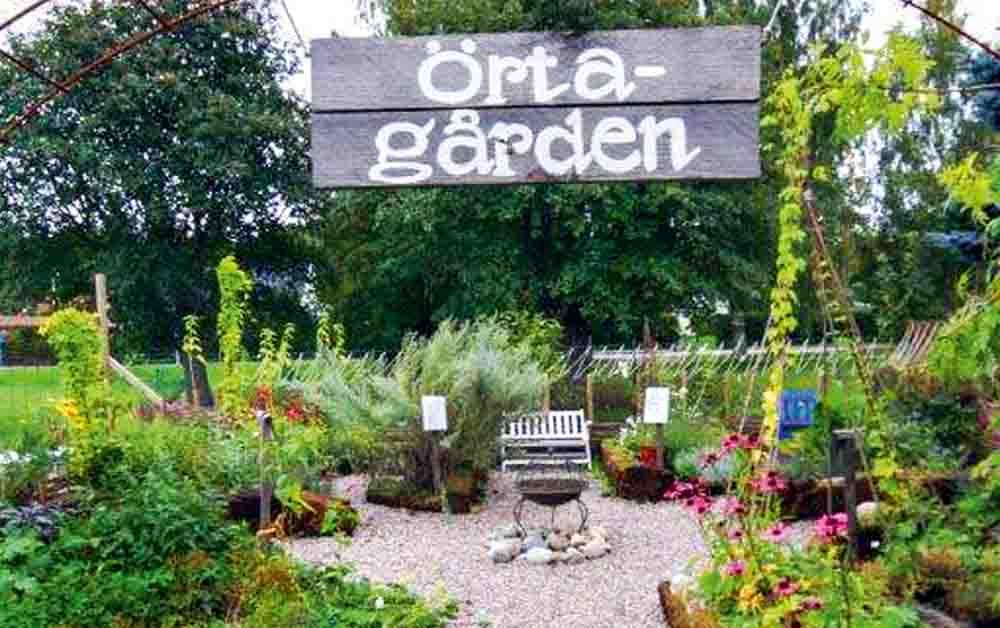 Hedvigs Trädgård
